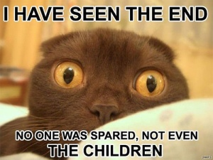 prophet_lol_cat_Cat_lolzmore-s500x375-60300-580